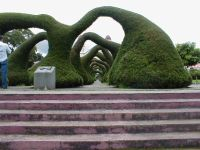 Sculptured plants in Zarcero Square